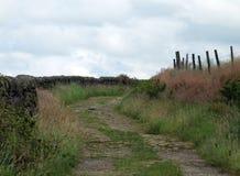Bobina del carril y del sendero del país alrededor de una colina Imagenes de archivo