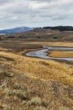 Bobina del río a través de Hayden Valley Foto de archivo