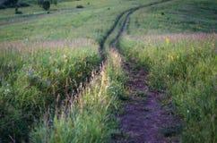 Bobina in discesa della strada non asfaltata del paese nell'erba alta in montagne di Altai, il Kazakistan, al crepuscolo Fotografia Stock