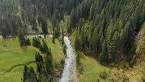 Bobina, río de Prut que burbujea en las montañas cárpatas almacen de metraje de vídeo