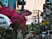 Bobinador em cone de ChiangMai imagem de stock