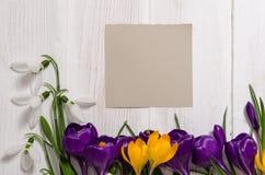 Bobinador em cone do açafrão e snowdrops no fundo de madeira Fotos de Stock