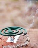 Bobine de moustique photos stock