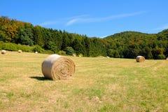 Bobine di fieno nel campo dopo il raccolto di grano in Germania Fotografia Stock