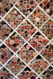 Bobines d'amorçage Image stock