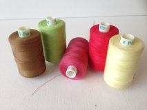 Bobines de fil de coton Photos stock