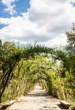 Boboli Gardens Stock Image