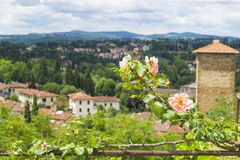 Boboli gardens. The most beautiful green place in Florence Stock Photos