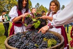 The second ethnic festival Bobovischenske Grono was held in Zakarpattya region stock photo