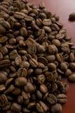 bobowa kawa Zdjęcie Stock