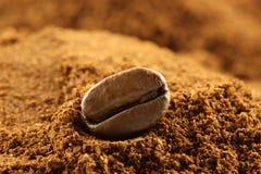 bobowa kawa jeden Obraz Stock
