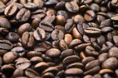 bobowy coffe Zdjęcie Royalty Free