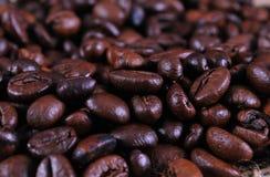bobowy kafe Obrazy Stock