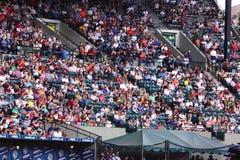 bobrów fan Fotografia Stock