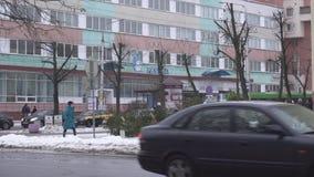 Bobruisk, Беларусь - 29-ое декабря 2019: Базар рождественской елки, продажа деревьев на Новый Год, зима акции видеоматериалы