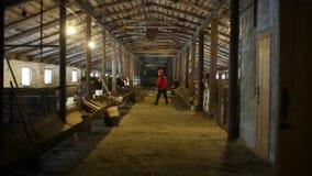 Bobruisk, Bielorrússia - 12 de janeiro de 2019: Trabalhador novo do cattlefarm com revestimento vermelho e do forcado que anda ao filme