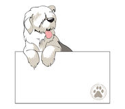 Bobtail dog looking over a blank. Illustration of Bobtail DOG looking over a blank Stock Photos