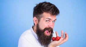 A boca aberta da cara feliz do homem com barba come morangos Queira tentar minhas morangos farpadas das posses do moderno da baga imagem de stock