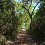 Boca Brava Island Arkivbilder
