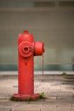 Boca de incêndio Foto de Stock Royalty Free