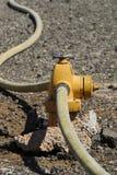 Boca de incêndio & mangueira de incêndio Imagem de Stock