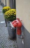 Boca de incêndio de fogo Fotografia de Stock