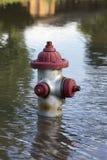 Boca de incêndio de fogo na água da inundação Imagens de Stock Royalty Free