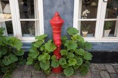 Boca de incêndio de fogo na rua da pedra do godo Imagens de Stock Royalty Free