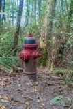 Boca de incêndio de fogo vermelho fotografia de stock royalty free