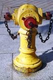 Boca de incêndio de incêndio Imagem de Stock Royalty Free