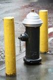 Boca de incêndio de incêndio de New York Imagens de Stock