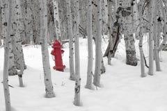 Boca de incêndio de incêndio na neve fotografia de stock