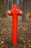 Boca de incêndio de incêndio vermelho Foto de Stock Royalty Free