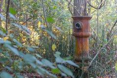 Boca de incêndio de fogo abandonada velha Foto de Stock Royalty Free