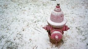 Boca de incêndio de fogo só coberto de neve foto de stock royalty free