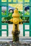 Boca de incendio de la boca de incendios Fotografía de archivo