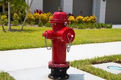 Boca de incendios roja fotos de archivo