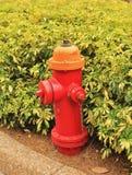 Boca de incendios roja Fotografía de archivo libre de regalías