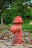 Boca de incendios roja con moho en el parque imagen de archivo libre de regalías