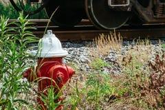 Boca de incendios roja en la cubierta de tierra de la corteza, frente de un arbusto que está comenzando a mostrar colores de la c imagenes de archivo