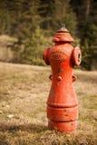 Boca de incendios vieja en un pueblo fantasma en Columbia Británica Fotos de archivo