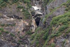 Boca de la cueva en la ladera de Rockface Fotografía de archivo