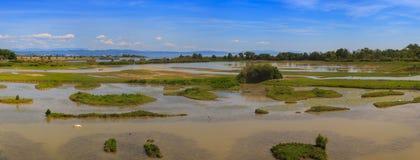 Boca de río de Soca Fotografía de archivo