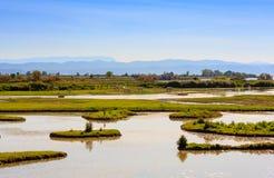 Boca de río de Soca Fotos de archivo libres de regalías