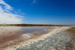 Boca de rio de Ugab imagem de stock