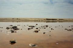Boca de rio de Ugab Foto de Stock