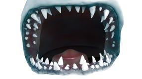 Boca do tubarão foto de stock royalty free