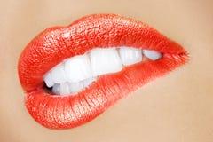 Boca femenina atractiva Imagen de archivo libre de regalías