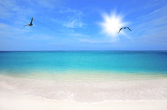Boca Grandi beach Royalty Free Stock Photos