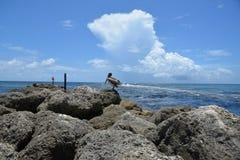 Boca Raton, roches d'admission de la Floride rayent l'entrée pour maintenir l'entrée ouverte et pour libérer de l'accumulation de Photos libres de droits